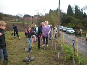 Young people planting along the boundary 2