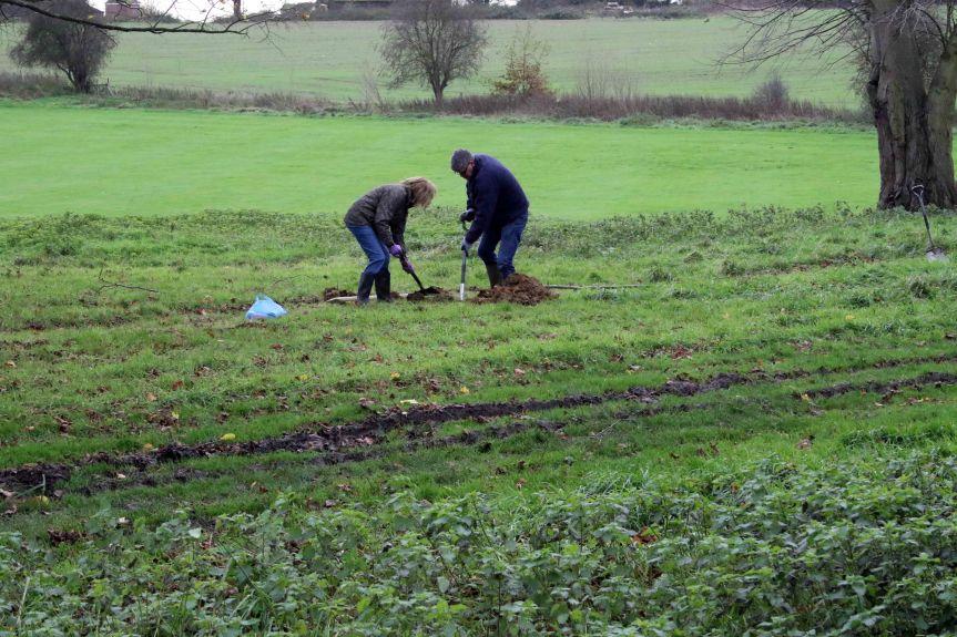 IMG 0685 Tree planting Cobham Hall 2015-11-28 c1e