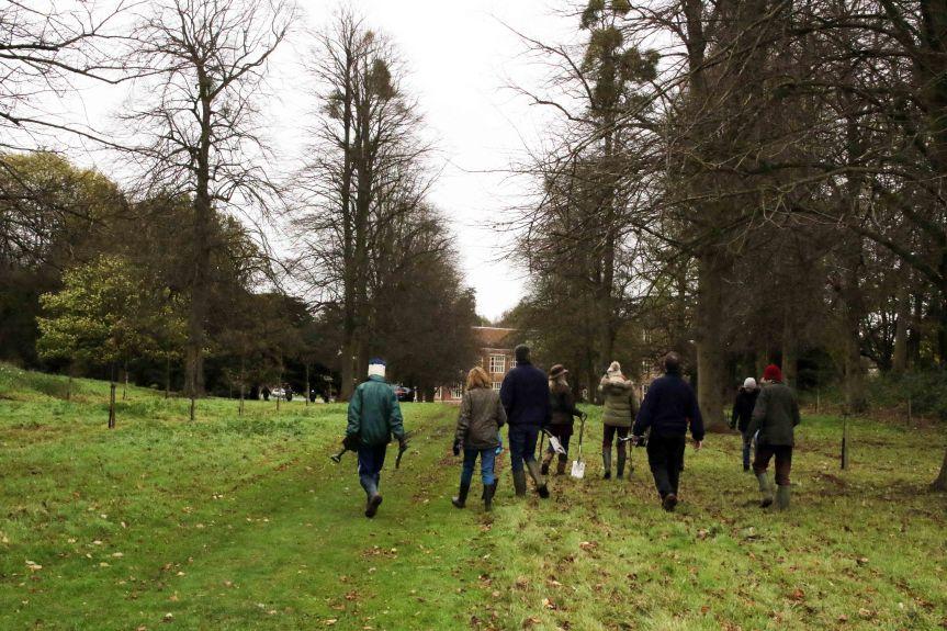 IMG 0712 Tree planting Cobham Hall 2015-11-28 c1e